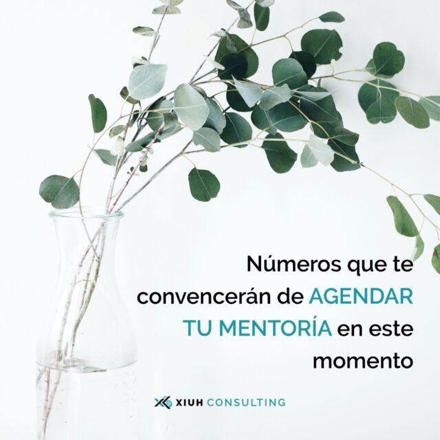 mentoría